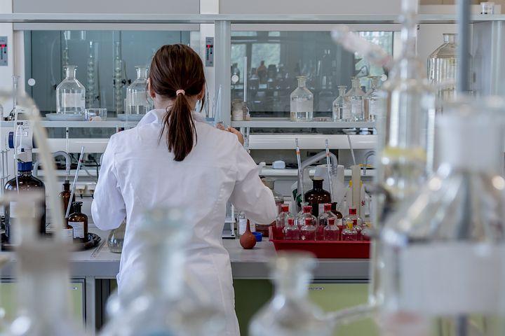 製薬企業の研究職(基礎研究)の仕事内容
