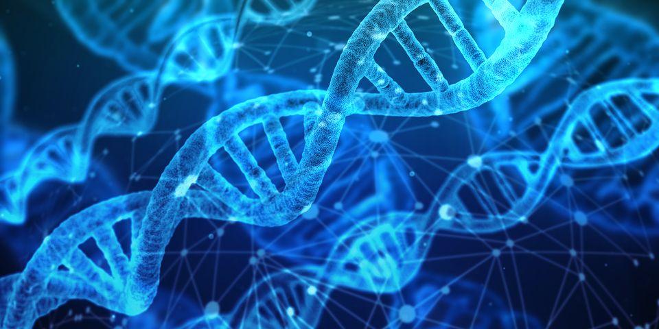 標的ベースと表現型スクリーニング (Phenotypic screening): 創薬研究の2つの流れ