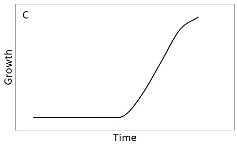 Growth curve C