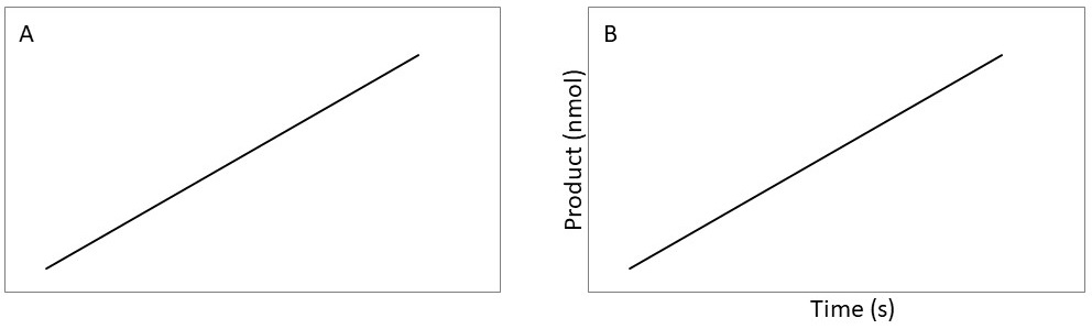 Graph with and without labels