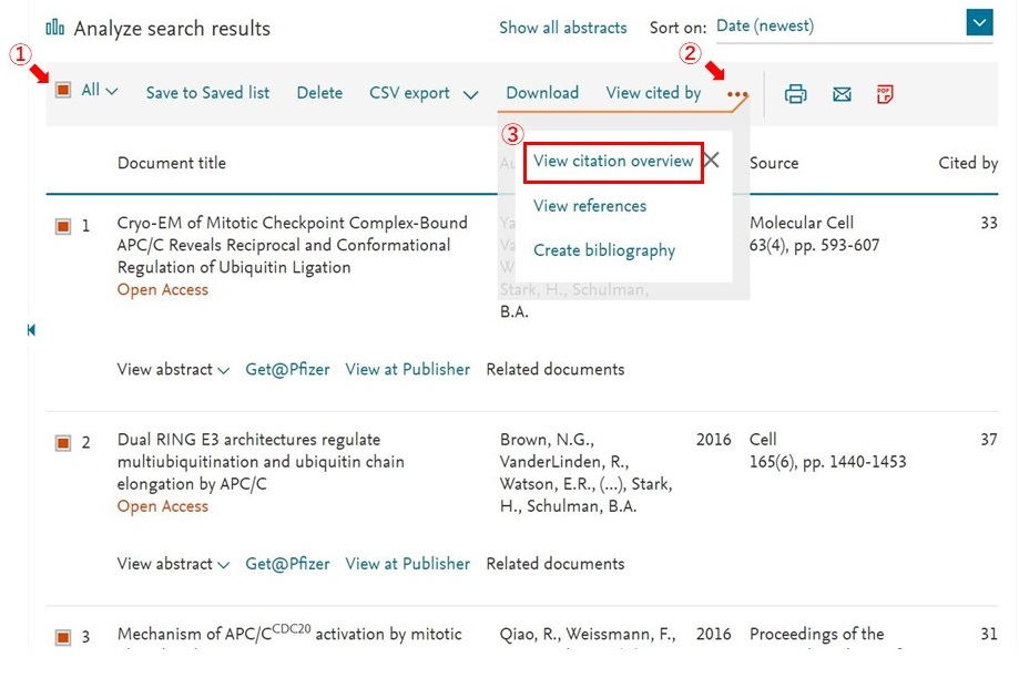 Scopus - citation report 1