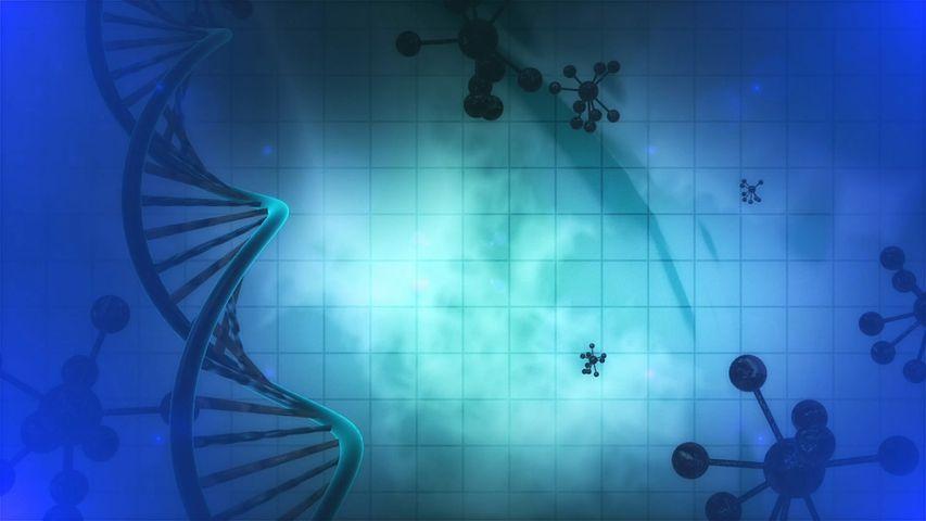 創薬研究のスクリーニング方法: DNA Encoded Libraryとハイスループットスクリーニング